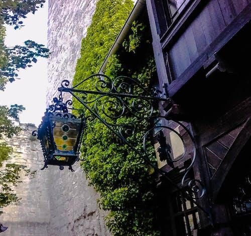 Darmowe zdjęcie z galerii z lampa, rudelsburg, zamek
