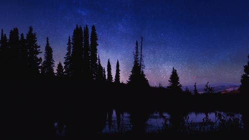 Free stock photo of dusk, forest, mountains, nature