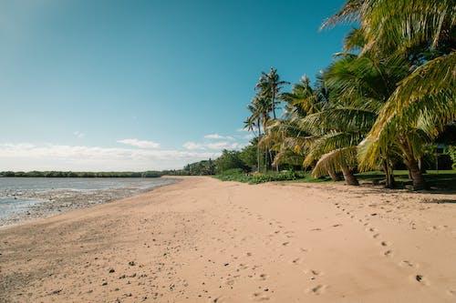 Δωρεάν στοκ φωτογραφιών με ακτή, άμμος, αμμουδιά, θάλασσα