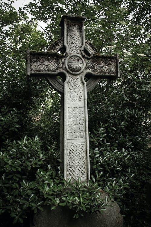 Gratis lagerfoto af grøn, keltisk kors, Magi, père lachaise