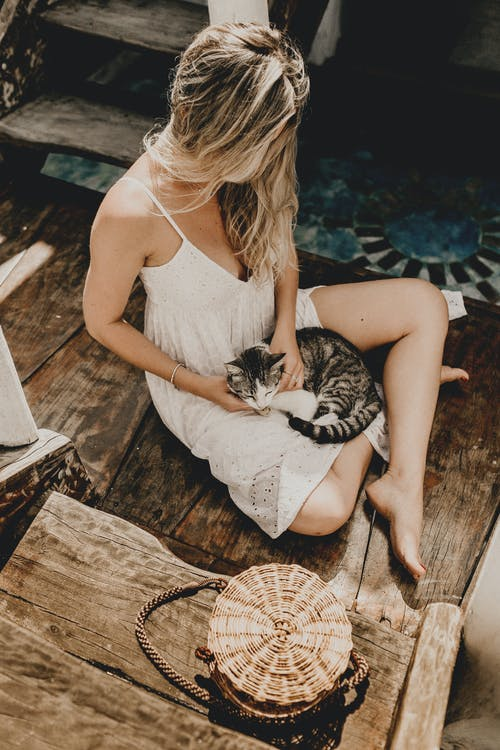 Photo Of Woman Touching Cat