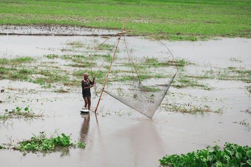 Fotos de stock gratuitas de agricultura, agua, al aire libre, barro