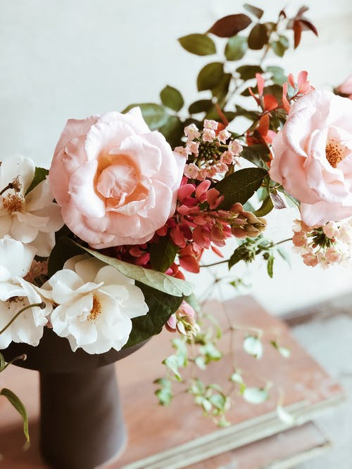 핑크 꽃잎 꽃