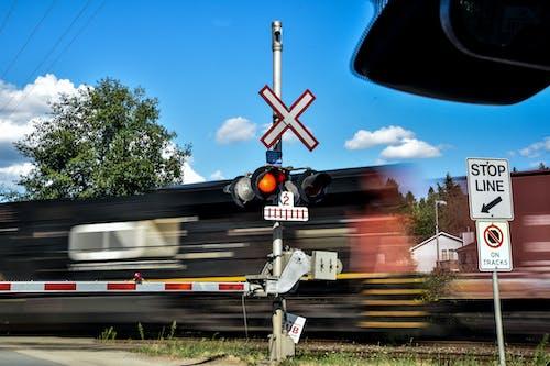 Gratis arkivbilde med tog