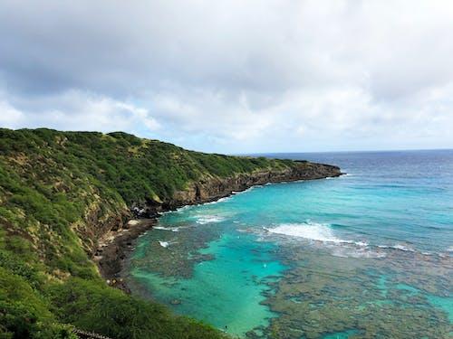 balık, dağ, Hawaii, mavi okyanus içeren Ücretsiz stok fotoğraf