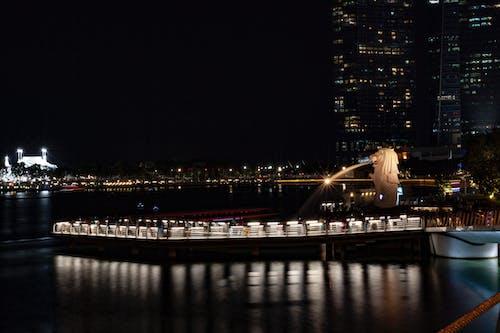 คลังภาพถ่ายฟรี ของ มาริน่าเบย์แซนด์, สิงคโปร์, สิงคโปร์สิงโตทะเล, สิงโตทะเล
