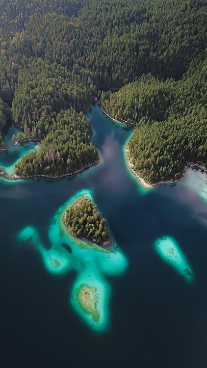 azúrová modrá, cieľ cesty, dažďový prales