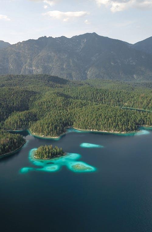Fotobanka sbezplatnými fotkami na tému azúrová modrá, chladné svetlo, cieľ cesty, dažďový prales