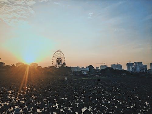 Základová fotografie zdarma na téma Hanoj, léto, slunce, soumrak