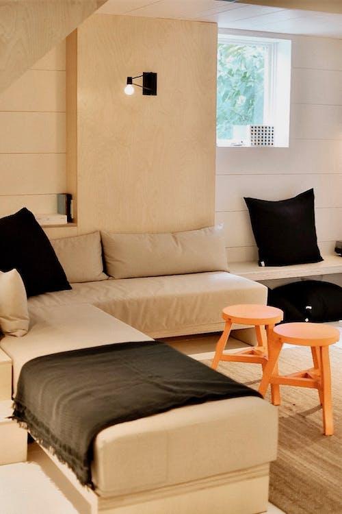 Foto d'estoc gratuïta de apartament, cadires, casa, catifa