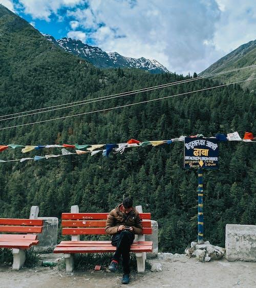 Безкоштовне стокове фото на тему «Індія, відпочинок, вродлива, вродливий»