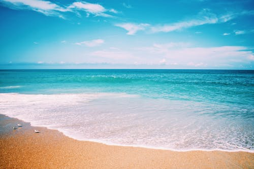 Foto profissional grátis de água, areia da praia, atraente, beira-mar