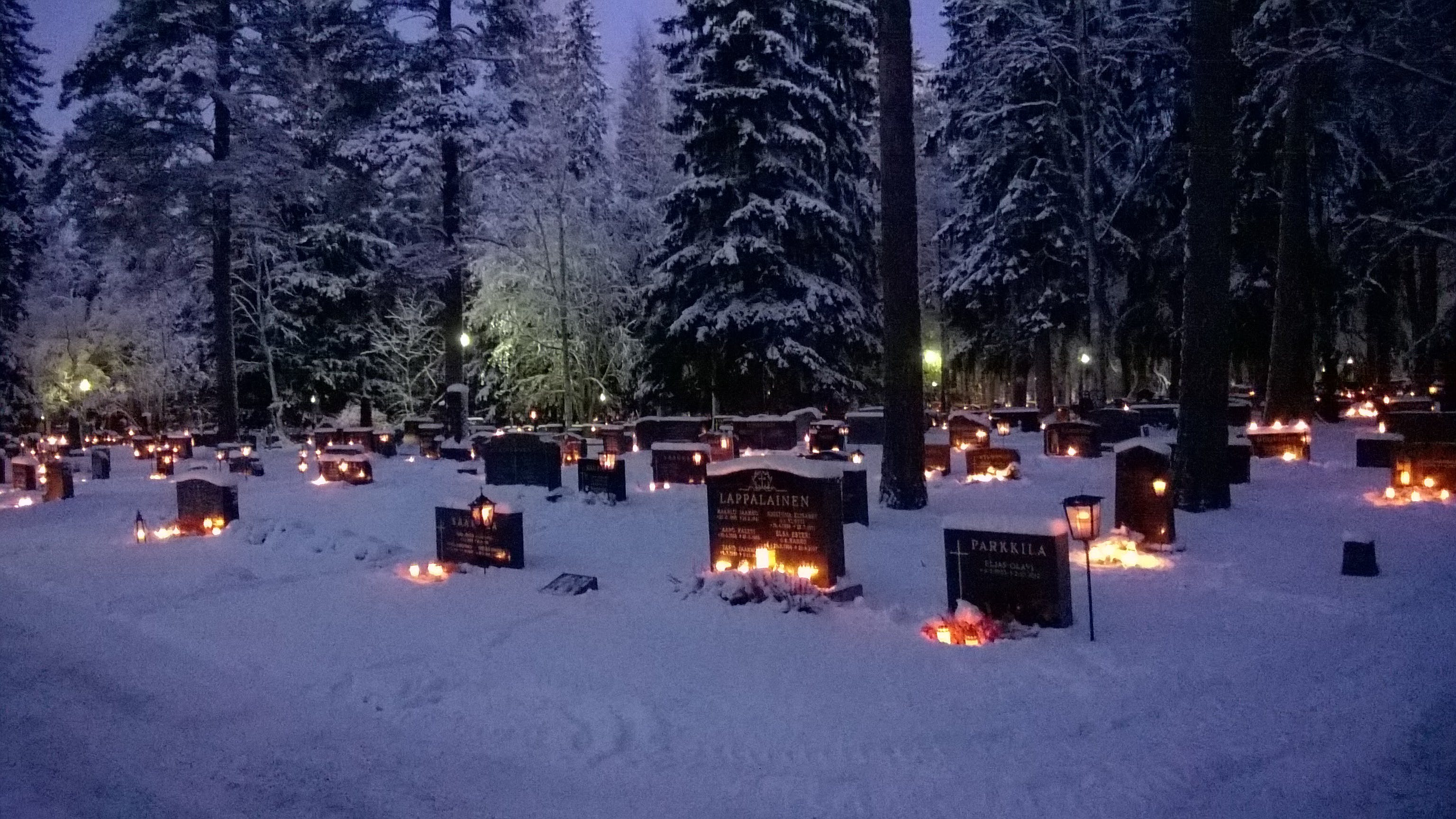 Free stock photo of candles, cemetary, Finland, forest