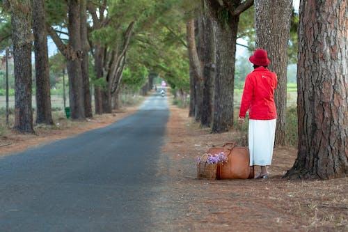 Woman Standing Beside Tall Tree Near Road