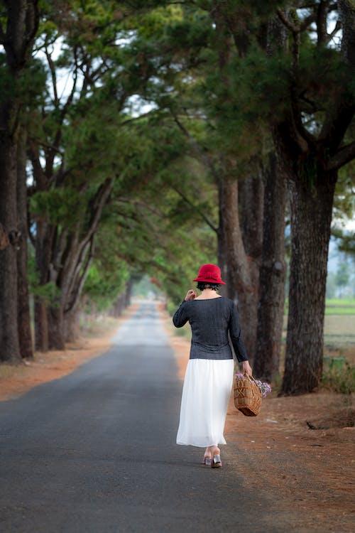Photos gratuites de adulte, arbres, chapeau rouge, chaussée
