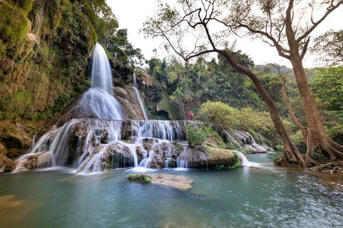 Бесплатное стоковое фото с вода, водопады, деревья, джунгли
