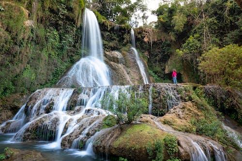 Imagine de stoc gratuită din apă, apă curgătoare, arbori, aventură