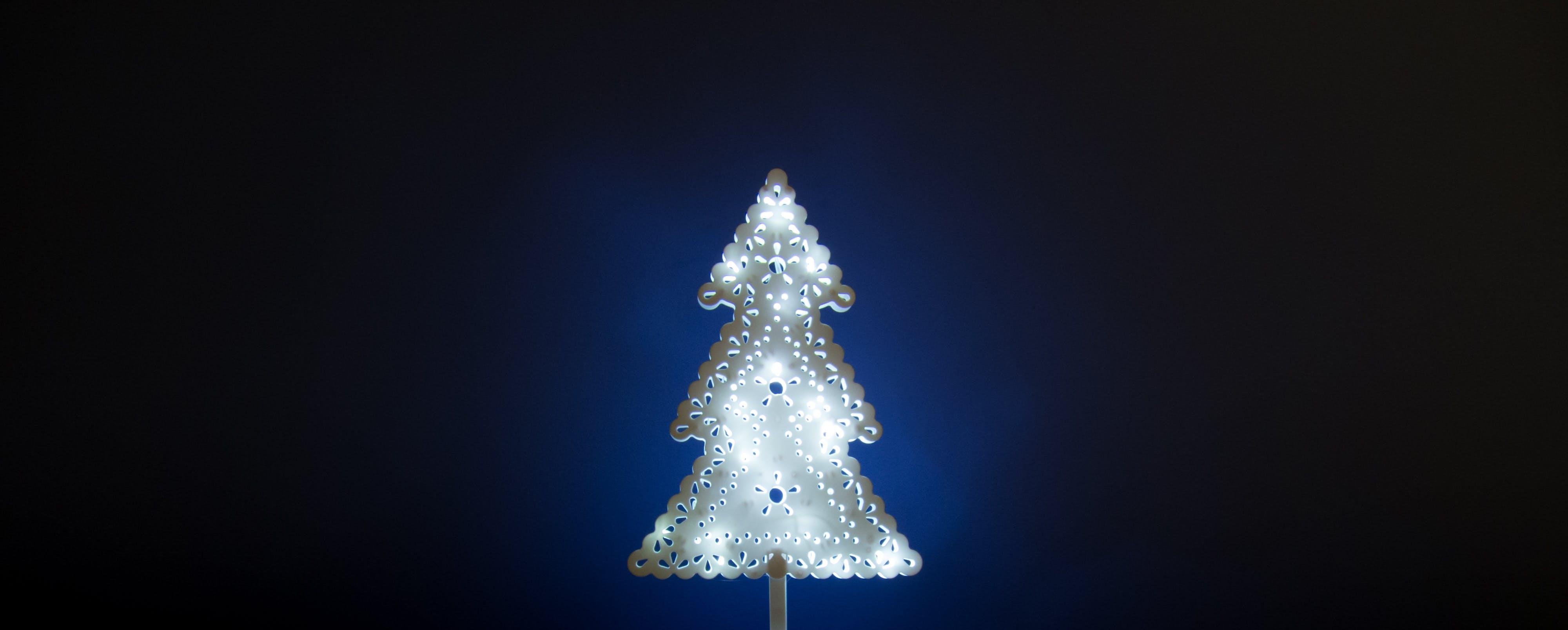 Free stock photo of beautiful, blue, christmas tree, darkness