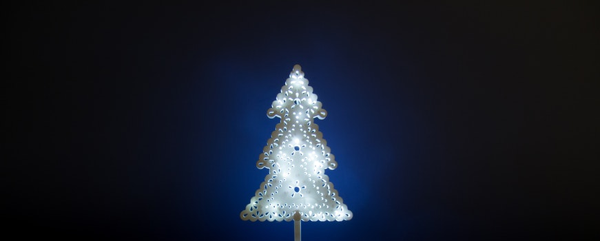 Free stock photo of light, holiday, blue, tree