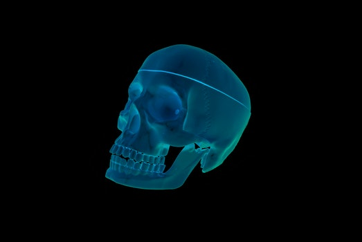 Free stock photo of blue, head, medicine, skull