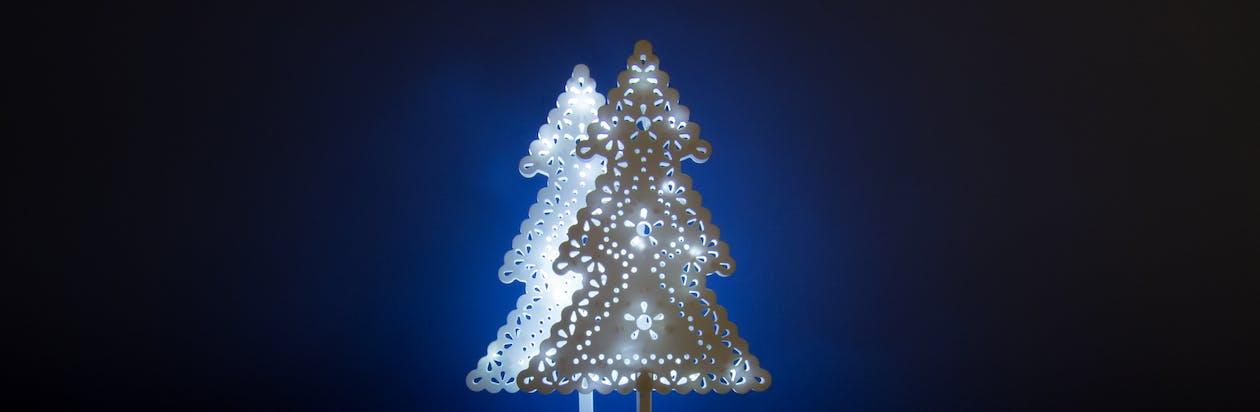 Free stock photo of beautiful, blue, christmas tree