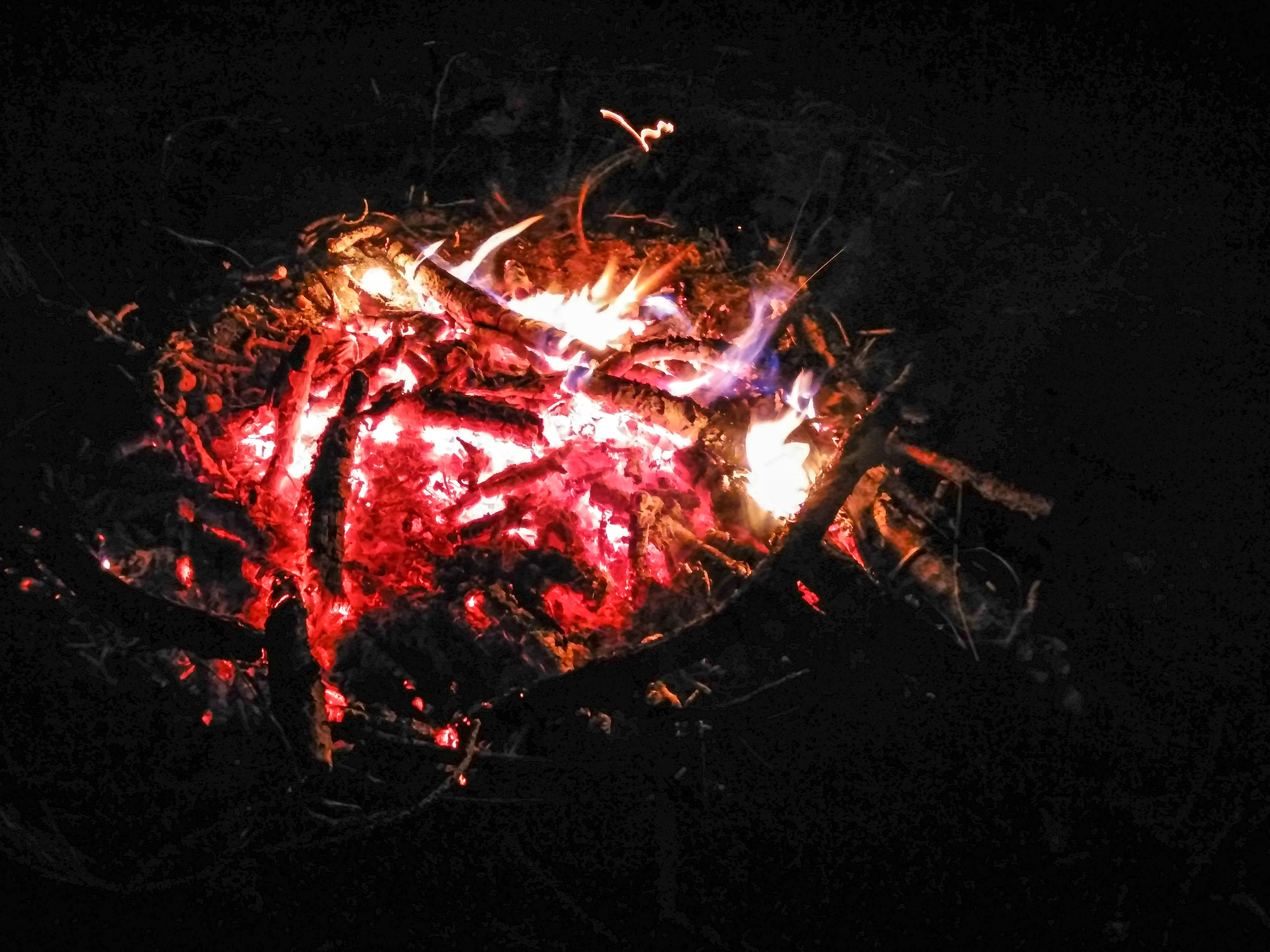 Free stock photo of bonfire, campfire, camping, darkness