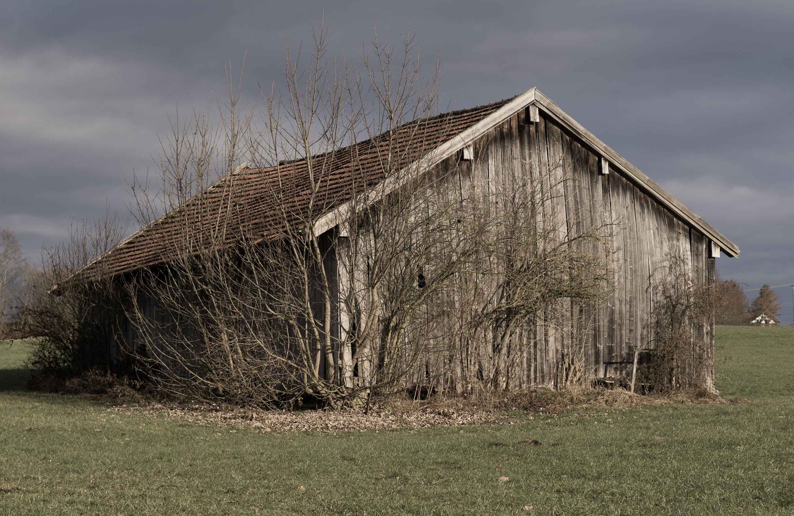 Free stock photo of nature, Old shack