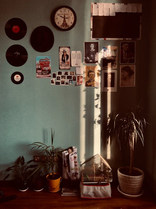 Fotos de stock gratuitas de adentro, casa, decoración, discos de vinilo