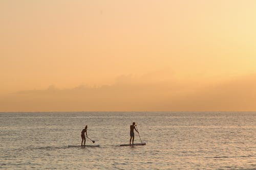 Man and Woman Paddle Boarding At Sea