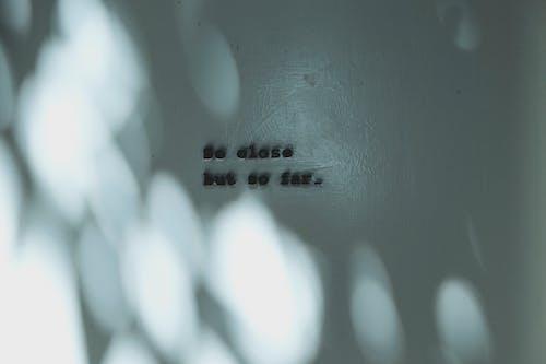 Foto d'estoc gratuïta de abstracte, blanc i negre, caràcter, clareja