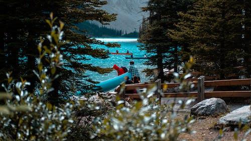 Foto d'estoc gratuïta de #morainelake #lake #canoe #teamwork #nature, a l'aire lliure, aigua, arbre
