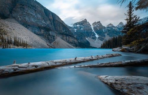 açık hava, ağaçlar, ahşap, buz içeren Ücretsiz stok fotoğraf