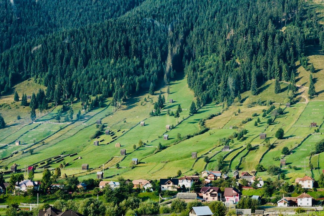 Kostnadsfri bild av åkermark, antenn, berg