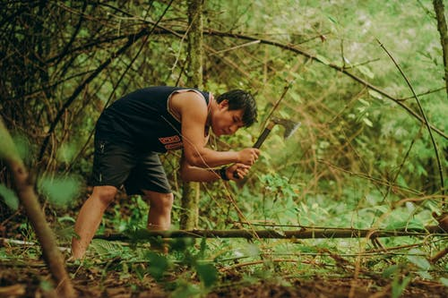 Free stock photo of bushcraft, camping, cutting, forest