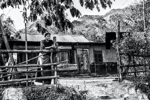 Бесплатное стоковое фото с Взрослый, дерево, деревянный забор, дневной свет