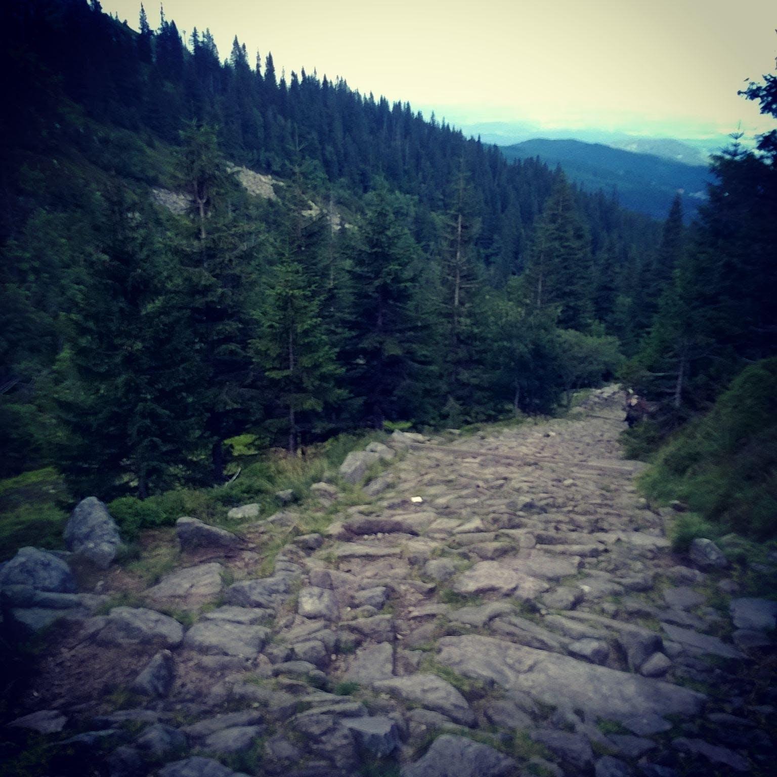 Free stock photo of mountain, rocks, trail