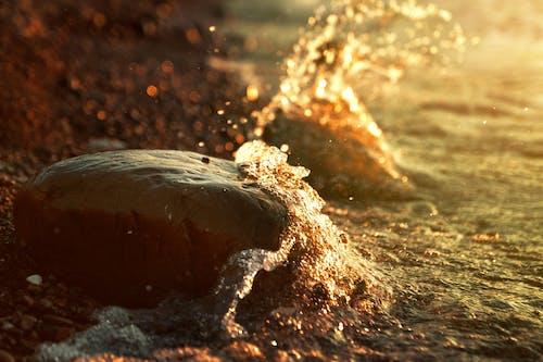 Foto profissional grátis de à beira-mar, crepúsculo, dourado, lindo pôr do sol