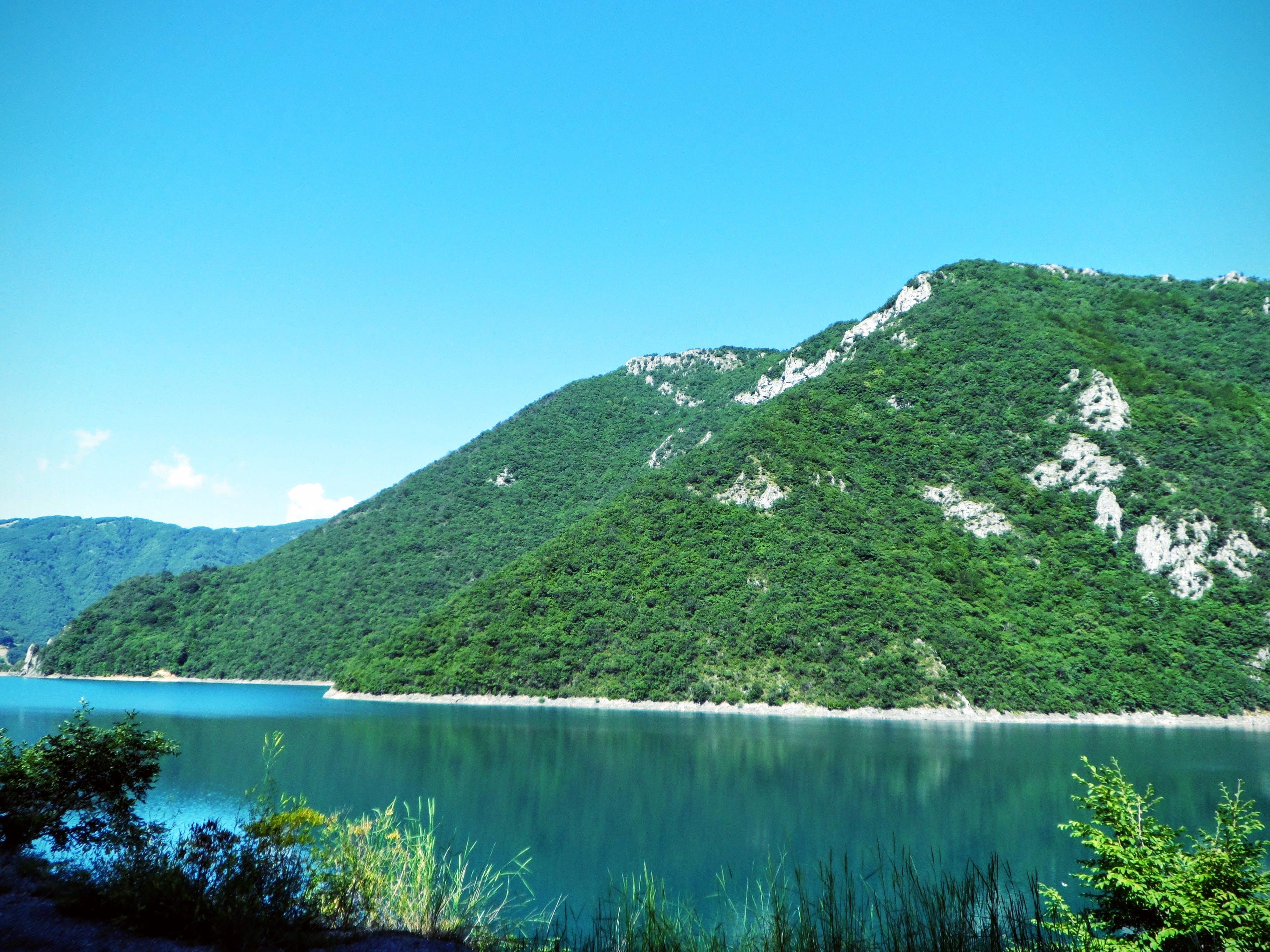 Free stock photo of blue sky, forrest, island, lake