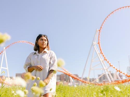 Gratis stockfoto met achtbaan, bloemen, buiten, buitenshuis