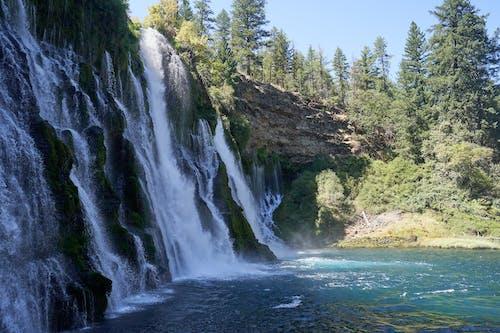 Free stock photo of burney falls, falls, water, water falls