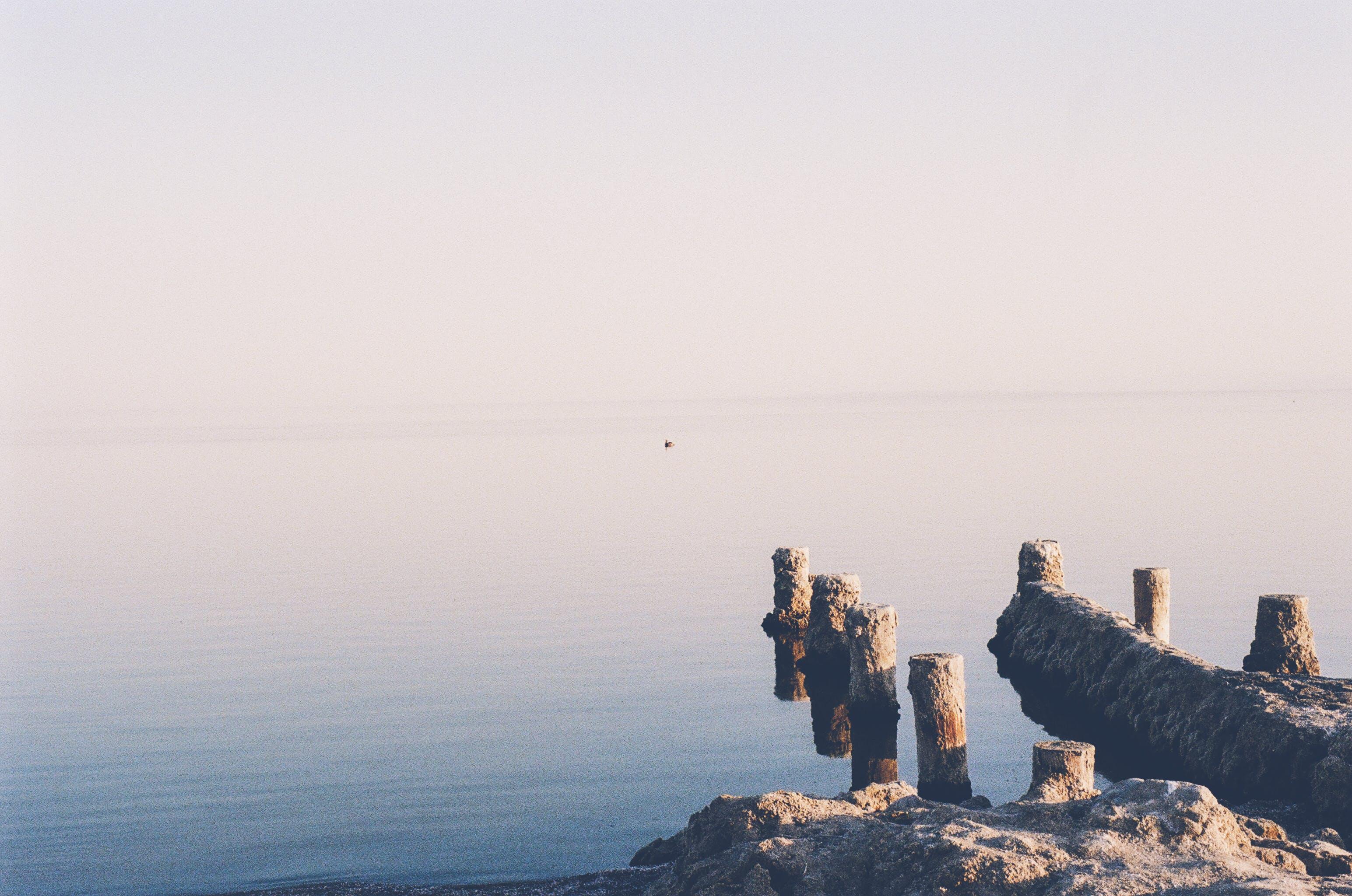Free stock photo of sea, whitespace