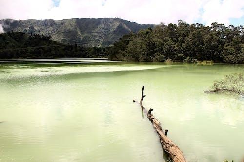 Foto profissional grátis de água, águas calmas, lago, paisagem