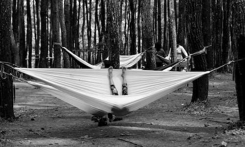 くつろぎ, くつろぐ, グレースケール, パークの無料の写真素材