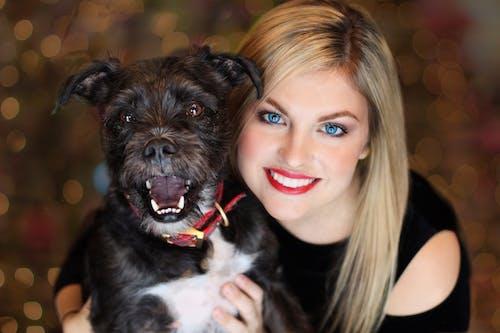 Foto stok gratis anak anjing, anjing, belum tua, berdarah murni