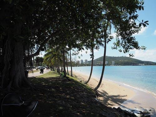 Free stock photo of beach, beauty, holiday, nature
