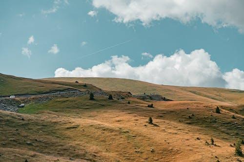 Gratis lagerfoto af bakke, bane, bjerg, dagslys