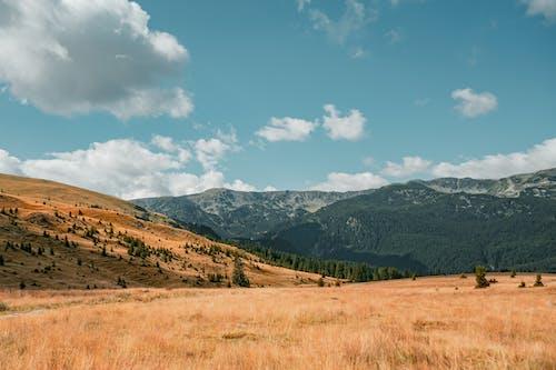 Základová fotografie zdarma na téma cestování, denní světlo, dobrodružství, hory