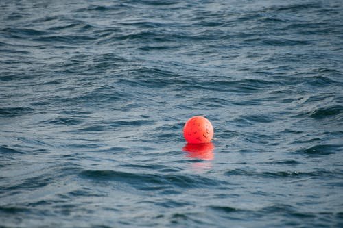 Photo of Buoy on Body of Water