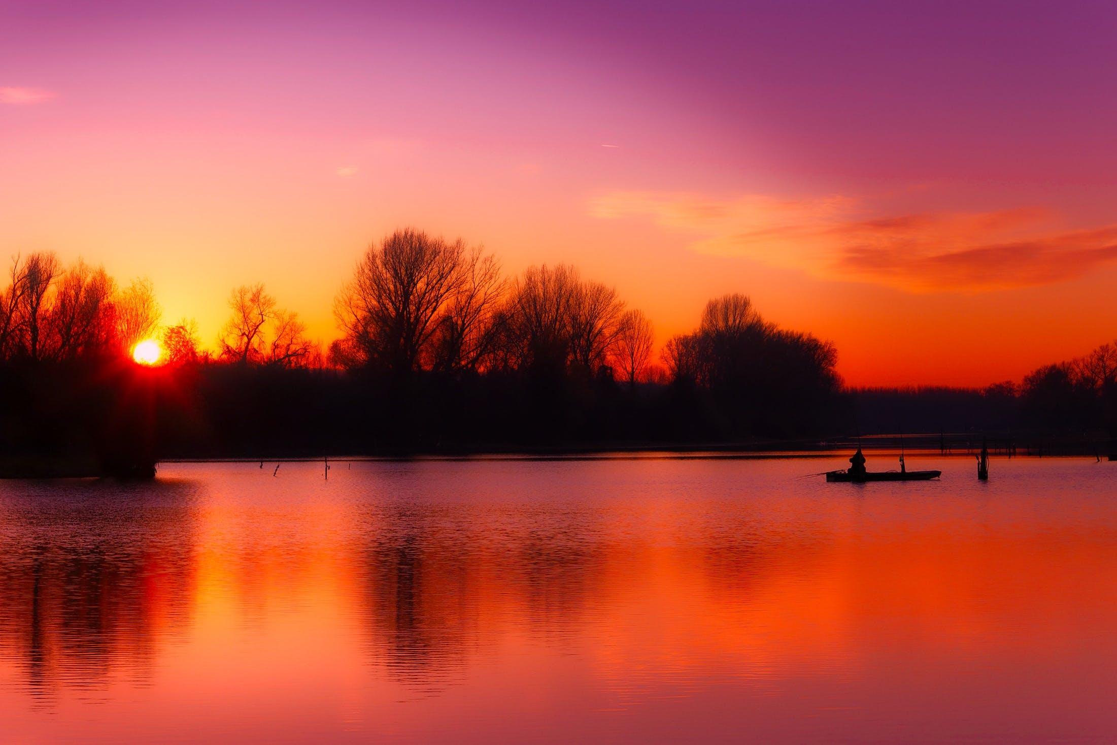 Kostenloses Stock Foto zu abend, angeln, bäume, boot