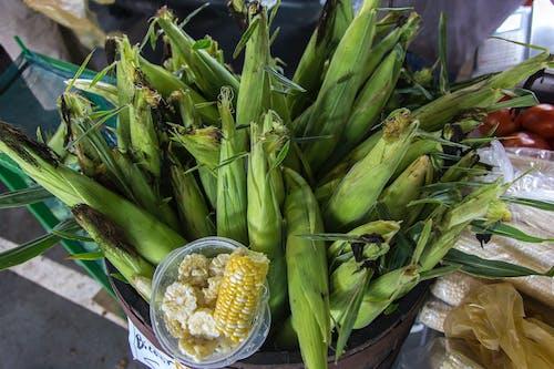 agbiopix, 市場, 新鮮, 玉米 的 免費圖庫相片